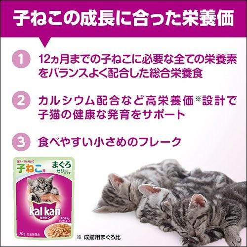 マースジャパン カルカン パウチ 12カ月までの子ねこ用 まぐろ ゼリー仕立て 70g×16個の商品画像|4
