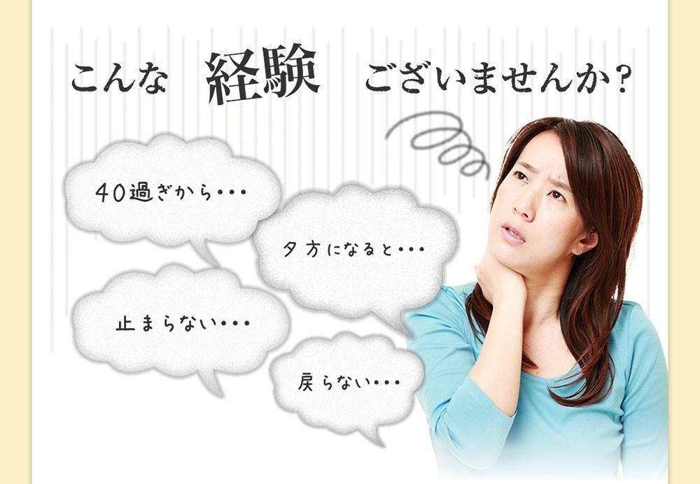 十津川農場 ねじめびわ茶 ティーバック 31袋× 1個の商品画像|3