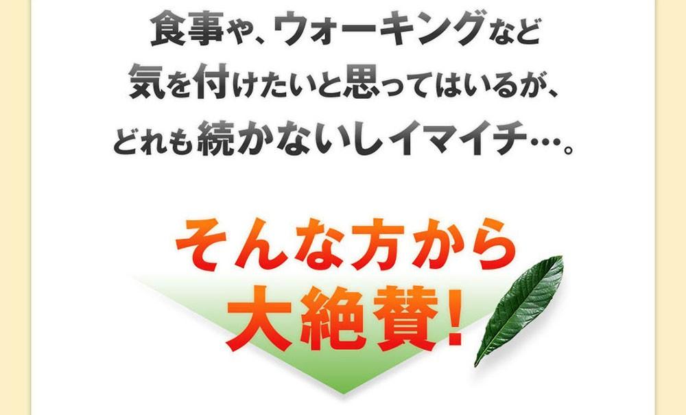 十津川農場 ねじめびわ茶 ティーバック 31袋× 1個の商品画像|4
