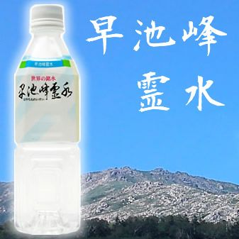 水 天然水 500ml   知る人ぞ知る還元水 早池峰霊水 500mlx20本 国産名水 天然水 メーカー直送 代引不可