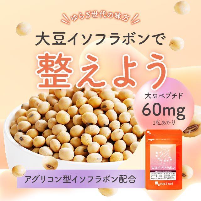オーガランド 大豆イソフラボン 250mg 6ヵ月分 90粒 × 6個の商品画像|3
