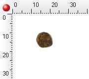 ボッシュ bosch ハイプレミアム ミニシニア 1kg×1個の商品画像|2