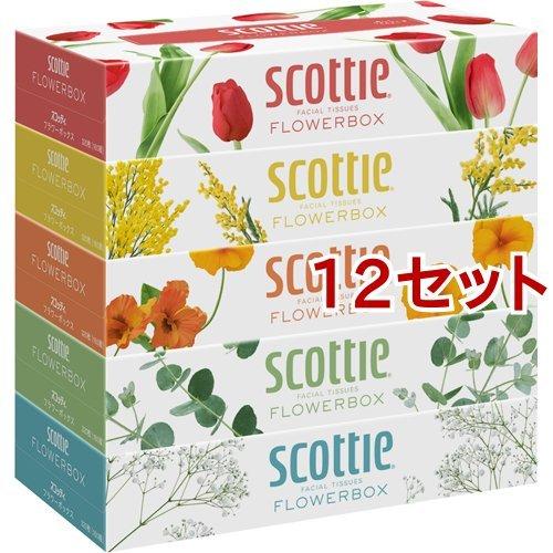 スコッティ ティシュー フラワーボックス(320枚(160組)*5コ入*12セット)