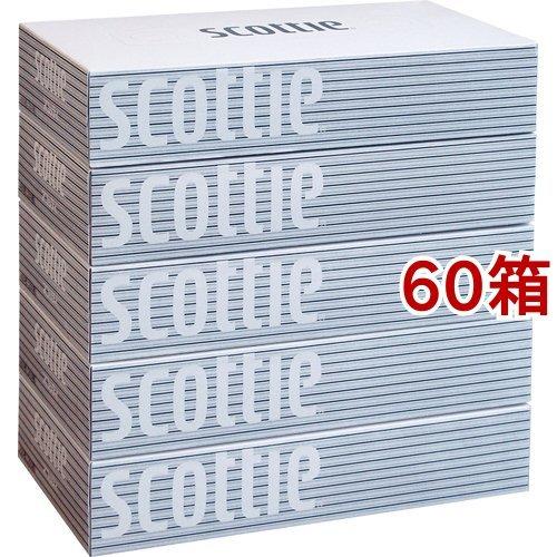 スコッティティシュー(400枚(200組)*5箱パック*12コセット)