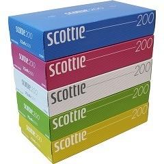 スコッティ ティシュー カラーデザイン ボックス(400枚(200組)*5コ入)