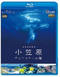 ビコム Relaxes BD 世界自然遺産 小笠原 ~ボニンブルーの海~
