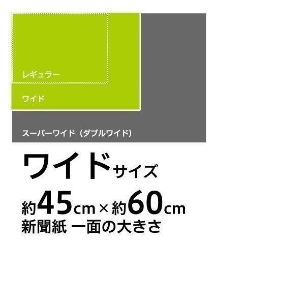 スタイルプラス ペットシーツ [ワイド 超薄型 150枚×4袋 600枚]の商品画像|ナビ