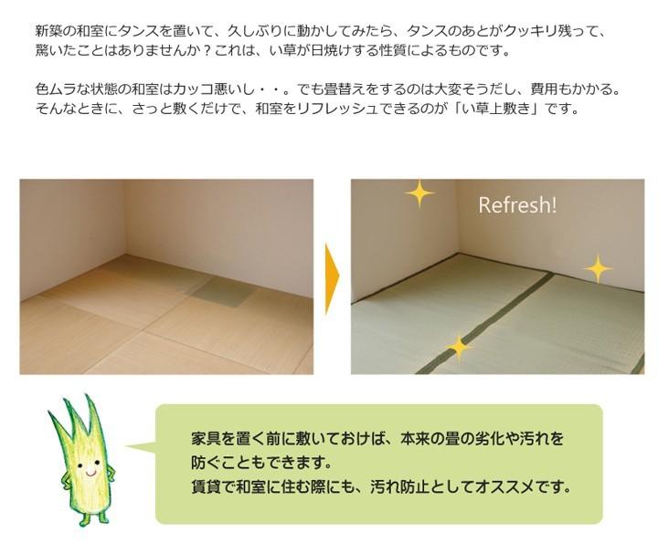 イケヒコ い草上敷き 草津 本間3畳 約191×286cmの商品画像|3