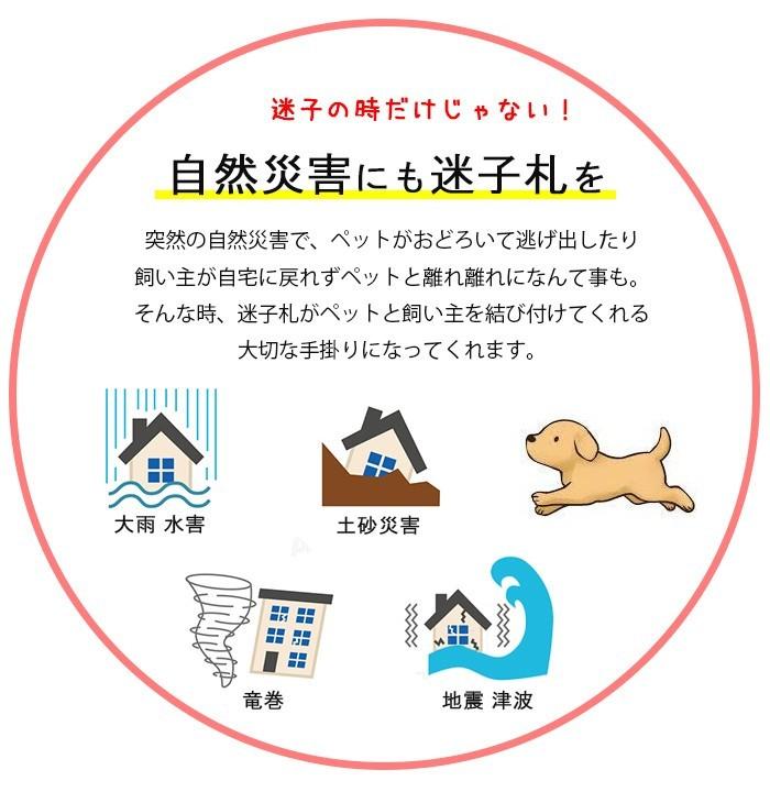 てるべる 猫 首輪 名前入り maigo-4の商品画像 3