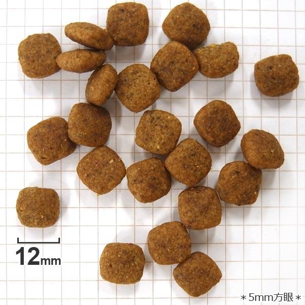 ブリード ヘルスニュートリション 柴犬 成犬用 8kg×1個の商品画像|3