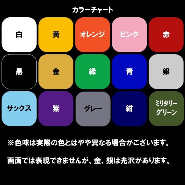 ■マーキング■色■