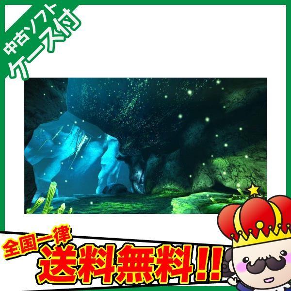 【3DS】カプコン モンスターハンター4の商品画像|4