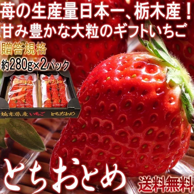 とちおとめ イチゴ
