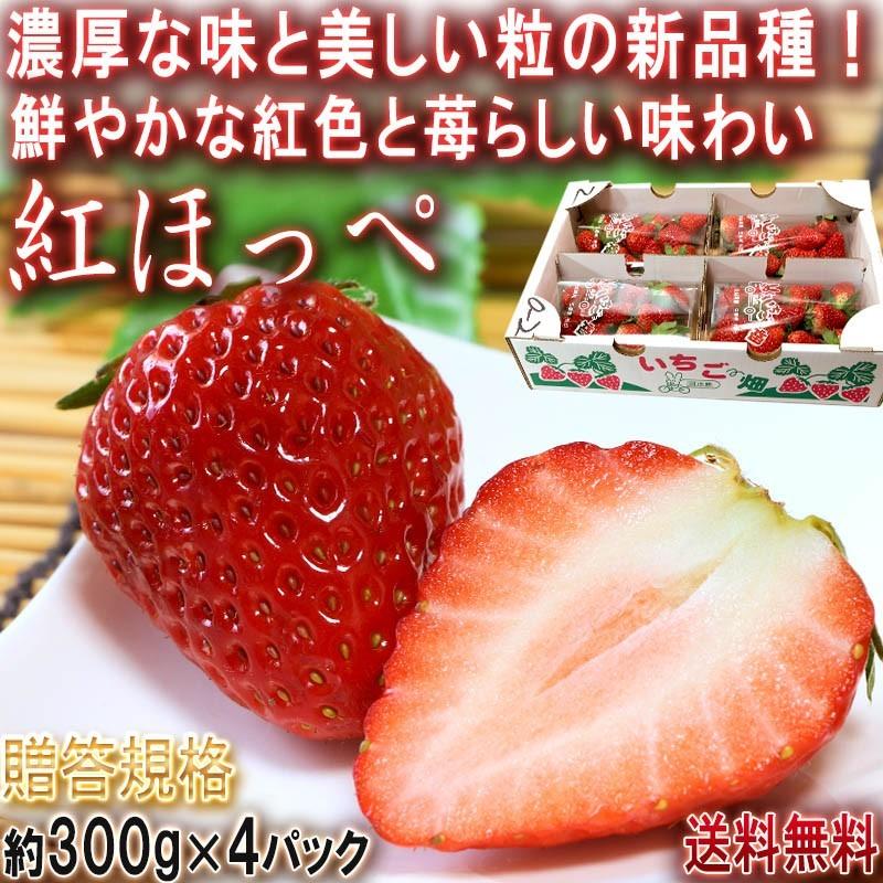 苺 紅ほっぺ