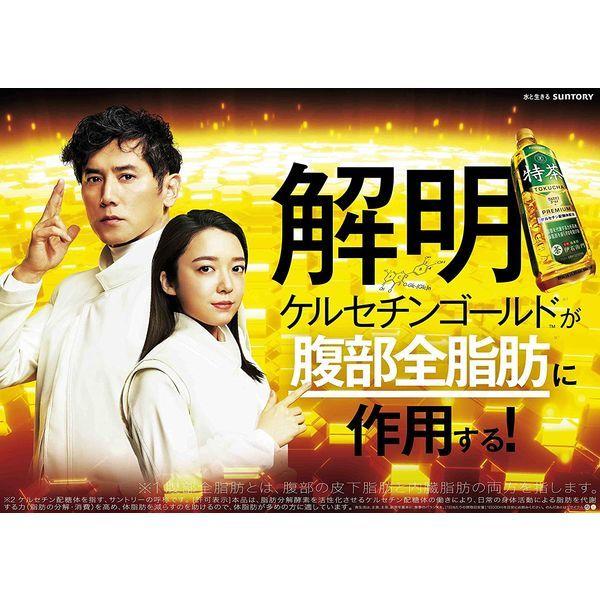 サントリー緑茶 伊右衛門 特茶 500ml × 6本 ペットボトルの商品画像|4