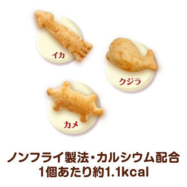グラン・デリ ワンちゃん専用おっとっと チャック袋タイプ チキン&ベジタブル味 50g×1個の商品画像|3
