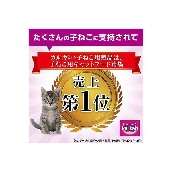 カルカン パウチ 離乳~12カ月までの子ねこ用 まぐろ入りかつお ゼリー仕立て 70g×16個の商品画像|4