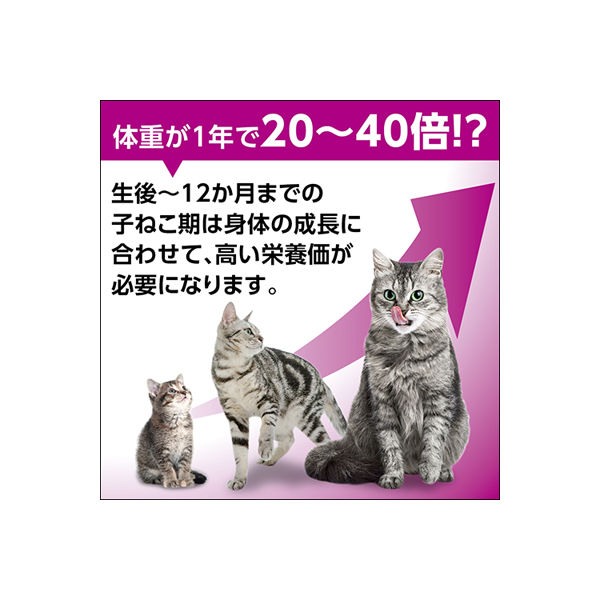 マースジャパン カルカン パウチ 12カ月までの子ねこ用 かにかま入り かつお スープ仕立て 70g×16個の商品画像|4