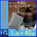 アイスコーヒー 水出しコーヒー バッグ 送料無料 (1L用 × 40 パック ) コールドブリュー コーヒー コーヒー豆 水出し珈琲
