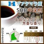 コーヒー豆 グアテマラ コーヒー SHB 中深煎 最高級グレード 500g グァテマラ 珈琲 50杯分 珈琲豆