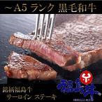 黒毛和牛 サーロイン ステーキ 2枚 ( 200g×2 ) A5 A...--9000