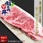 送料無料 黒毛和牛 サーロイン ステーキ 国産 銘柄 福島牛 A5 A4