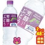 サントリー 芳醇ぶどう&サントリー天然水 PET540ml×24本入×2ケース:合計48本 冷凍兼用ボトル /飲料