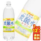 伊賀の天然水 炭酸水レモン 1L×12本 PET