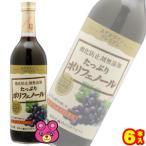 アルプス あずさワイン プレミアム 赤 720ml×6本入(ケース販売品)(お酒)