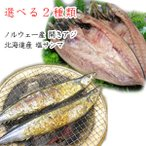開きアジ 塩鯖フィレ 塩サンマ よりどり2種類セット 北海道産 ノルウェー産 /要冷凍/クール便/食品:林商店