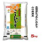 山口県産米 / 天恵米むつみ こしひかり 5kg /お米:農協直販