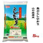 山口県産米 / あぶ こしひかり 5kg /お米:農協直販