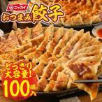 冷凍食品 餃子 ギョーザ ぎょうざ 100個(50個×2パック)焼き餃子 水餃子 蒸し餃子 焼ギョーザ 水ギョーザ 蒸しギョーザ 焼きぎょうざ 水ぎょうざ