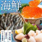 海鮮詰め合わせセット1(北海道産いくら醤油漬け150g・ほたて貝柱300g・白姫えび500g)送料無料