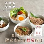 北海道産 気軽にどんぶり 2020 福袋 8食分(4種類×各2袋)  時短惣菜 レトルト食品 グルメ メール便A TSG