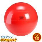 【特典 DVD付き】ギムニク バランスボール 直径 55cm (赤