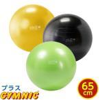 【特典 DVD付き】バランスボール 直径 65cm ギムニクPLUS(プラス)