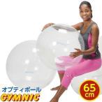 【特典 DVD付き】バランスボール 直径 65cm ギムニク・オプティボール