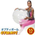 【特典 DVD付き】バランスボール 直径 55cm ギムニク・オプティボール