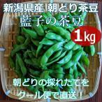 枝豆 茶豆 朝採り 1kg 新潟県産 藍子の茶豆 生 朝どり クール便 送料無料 十日町市 藍ちゃんファーム