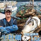生牡蠣 殻付き 1kg 大 生食用 生ガキ 宮城県産 漁師直送 格安生牡蠣お取り寄せ バーベキュー