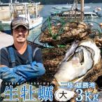 生牡蠣 殻付き 3kg 大 生食用 生ガキ 宮城県産 漁師直送 格安生牡蠣お取り寄せ バーベキュー
