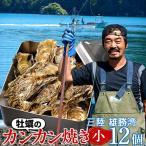 牡蠣カンカン焼きセット 殻付きカキ12個 三陸 宮城県産 送料無料