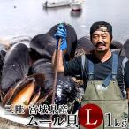 生ムール貝 大 1kg 三陸宮城県産 漁師直送 活ムール貝画像