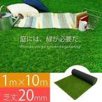 人工芝 ロール 芝生 1m×10m 芝丈20mm 単品 パークシアライト