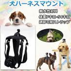 犬用フェッチ犬ハーネスマウント GoPro Hero 5 Session / 4 Sliver / 3+ / 3 Black / 2対応 調節可能チェストストラップカメラアクセサリーキット