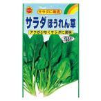 アタリヤ サラダほうれん草 秋野菜の種