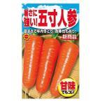 暑さに強い 5寸人参 秋野菜の種