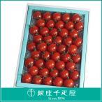 母の日 千疋屋 フルーツ 詰め合わせ お取り寄せ 贈り物 ギフト Gift 銀座千疋屋 フルーツトマト満杯詰め