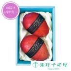 父の日 お中元 千疋屋 フルーツ 詰め合わせ お取り寄せ 贈り物 ギフト Gift 銀座千疋屋 国産完熟マンゴ(2Lサイズ)2個入